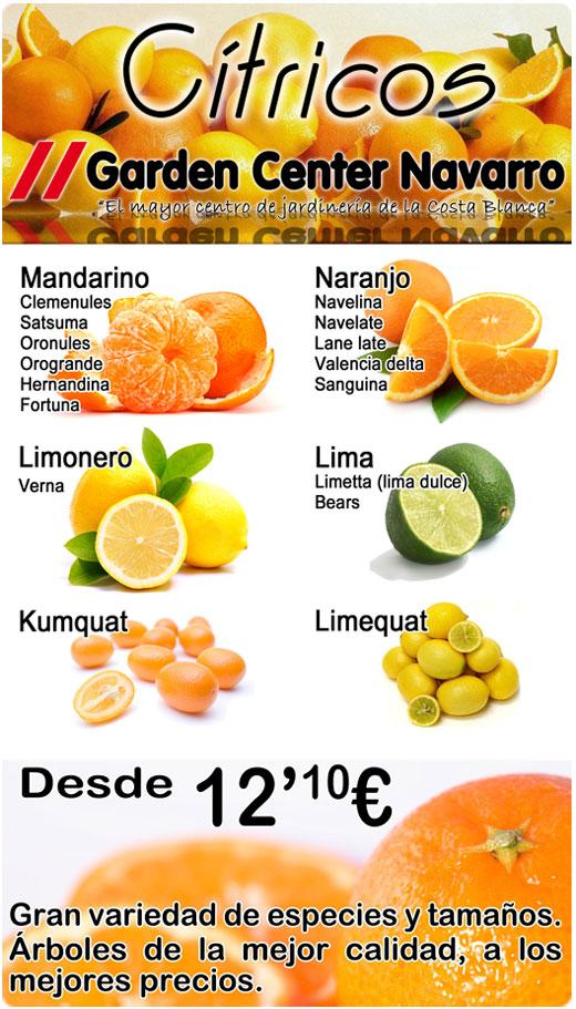 citricos_520